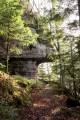 Forêt Domaniale des Reclos