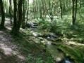 Espace naturel sensible de la Couasne de Floirac