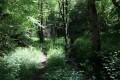 Sentier le long du ruisseau des Grenats