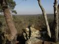 Un grand tour de l'Est de la Forêt de Fontainebleau