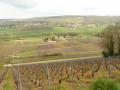 Entre Marne et vignes, au Mont-Saint-Père et sur le Coteau des Orchidées