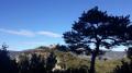 Gorges de Saint-Jaume et forteresses de Fenouillet