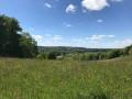 De crêtes en vallons autour de Saint-Hilaire-Peyroux