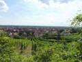 Le Hahnenberg depuis Châtenois et La Montagne des Singes