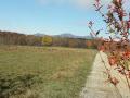 Vue sur les Vosges